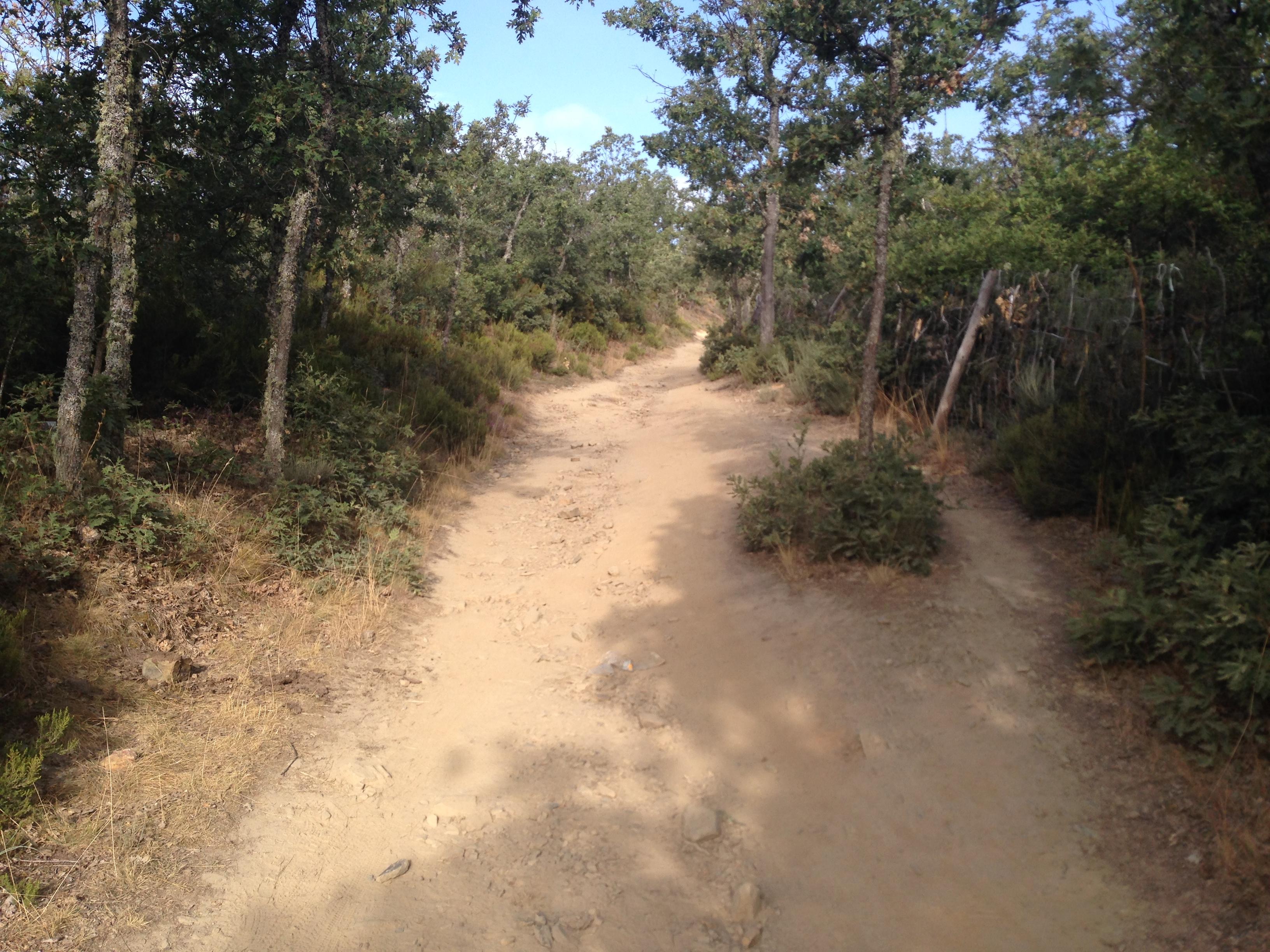 camino de santiago iphone 2014 904 IMG_5342.jpg