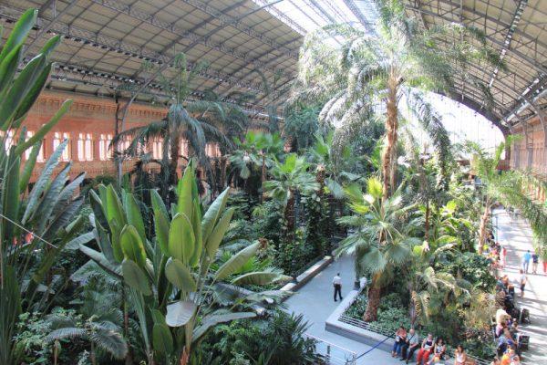 Dworzec Atocha wnetrze (1)