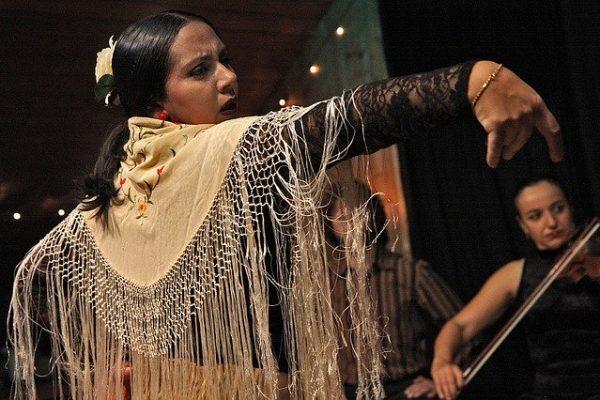 flamenco-594272_640